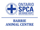 Barrie Animal Centre
